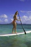 Mädchen im Bikini auf ihrem Paddelvorstand Stockbilder