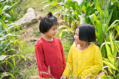 Mädchen im Getreidefeld Stockbilder