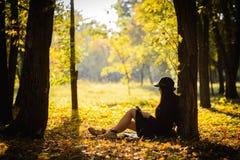 Mädchen im Park las das Buch Stockfotografie