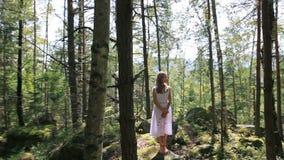 Mädchen im weißen Kleid, das in der Birkenwaldung am sonnigen Tag steht stock video