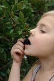 Mädchen isst eine Brombeere lizenzfreie stockfotos