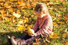 Mädchen 4 Jahre alte Wege im Herbstpark lizenzfreies stockfoto