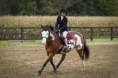 Mädchen-langsam galoppierendes Farben-Pony Lizenzfreies Stockbild
