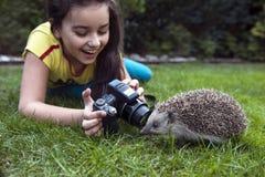 Mädchen möchte ein Foto des Igelen machen Stockfotografie