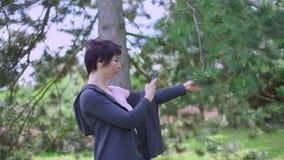 Mädchen macht ein Foto einer Kiefer am Telefon stock footage