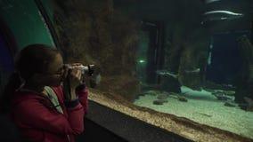 Mädchen macht Fotos des bunten Unterwasserweltvorrat-Gesamtlängenvideos stock footage