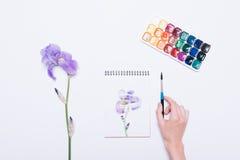 Mädchen malte eine blaue Blume in einem Notizbuch mit Aquarellen Stockbilder