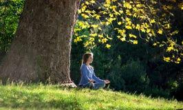 Mädchen meditiert, sitzend auf dem Gras unter einem Ahornbaum im Herbst lizenzfreies stockbild