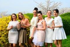Mädchen mit Champagner feiernd in Kirschblütes Garten Stockfotos