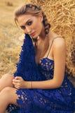 Mädchen mit dem blonden Haar im eleganten Kleid, das auf dem Heu aufwirft Lizenzfreies Stockfoto