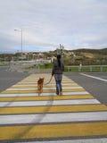 Mädchen mit dem Hund, der die Straße am Zebrastreifen kreuzt Lizenzfreies Stockbild
