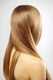 Mädchen mit dem schönen geraden Haar lizenzfreie stockfotografie