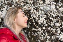 Mädchen mit einem blühenden Baum Stockbilder