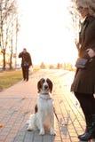 Mädchen mit einem Hund Lizenzfreies Stockfoto