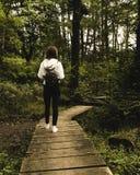 Mädchen mit einem Rucksack gehend in den Wald/in das Mädchen mit einem Rucksack/einem Mädchen, die auf eine Bahn im Wald gehen lizenzfreies stockfoto