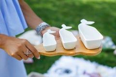 Mädchen mit einem Satz weißen leeren Saucieren auf einem hölzernen Behälter dient ein Picknick lizenzfreies stockbild