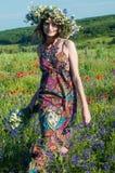 Mädchen mit einem Wreath der Blumen Gesicht des schönen ukrainischen Mädchens in einem Kranz des Sommers blüht auf Natur stockfotos