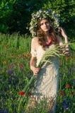 Mädchen mit einem Wreath der Blumen Gesicht des schönen ukrainischen Mädchens in einem Kranz des Sommers blüht auf Natur lizenzfreie stockfotos