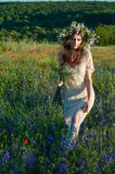 Mädchen mit einem Wreath der Blumen Gesicht des schönen ukrainischen Mädchens in einem Kranz des Sommers blüht auf Natur lizenzfreie stockfotografie