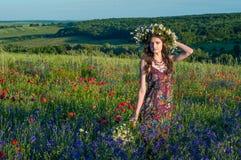 Mädchen mit einem Wreath der Blumen Gesicht des schönen ukrainischen Mädchens in einem Kranz des Sommers blüht auf Natur lizenzfreie stockbilder