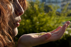 Mädchen mit Gras auf ihrer Hand stockfotos