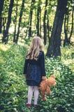 Mädchen mit hinterer Ansicht des Teddybären Stockfotografie
