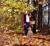 Mädchen mit Hund im Park Stockbild