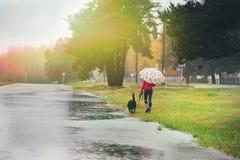 Mädchen mit Hund und Regenschirm im Regen Stockfoto
