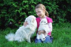 Mädchen mit Hunden stockbild