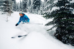 Mädchen mit spezieller Skiausrüstung ist, springend sehr schnell reiten und in den Gebirgswald Stockfotografie