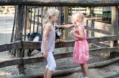 Mädchen mit Ziegen Lizenzfreies Stockbild