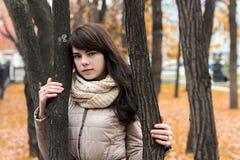 Mädchen nahe einem Baum gegen einen Hintergrund des Herbstlaubs Stockfoto