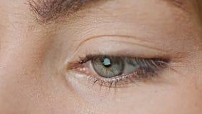 Mädchen ` s Augen-Leseinternet stockfoto