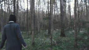 Mädchen ` s Hand berührt den Wald des Baums im Frühjahr stock video