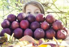 Mädchen spioniert hinter dem Haufen mit roten Äpfeln aus Stockbild