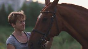 Mädchen streicht das Pferd stock video footage