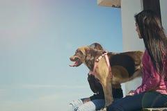 Mädchen und der Hund, der in einer Hütte sitzt lizenzfreie stockfotografie