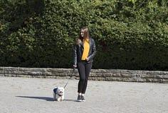 Mädchen und ein kleiner weißer Hund Park frech Gehen und Genießen lizenzfreies stockbild