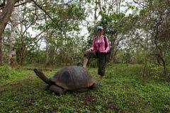 Mädchen- und Galapagos-Schildkröte Lizenzfreie Stockfotos