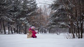 Mädchen und Hund Stockfotografie