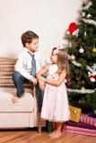 Mädchen und Junge nahe einem Tannenbaum Stockbild