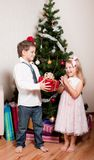 Mädchen und Junge nahe einem Tannenbaum Lizenzfreie Stockfotos