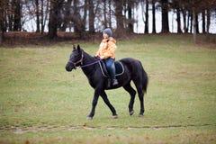 Mädchen und Pferd Stockbilder