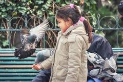 Mädchen und Taube lizenzfreie stockfotografie