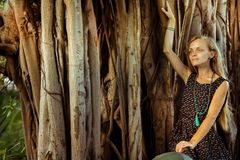 Mädchen unter dem heiligen Banyanbaum stockbilder