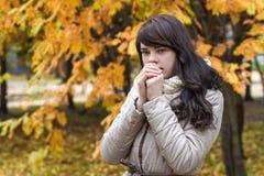 Mädchen vor dem hintergrund des Herbstlaubs Stockbilder