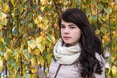 Mädchen vor dem hintergrund des Herbstlaubs Lizenzfreie Stockfotos
