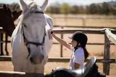 Mädchen, welches das Pferd in der Ranch pflegt lizenzfreies stockfoto