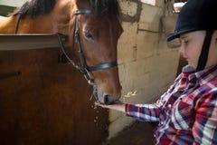 Mädchen, welches das Pferd im Stall einzieht lizenzfreies stockbild