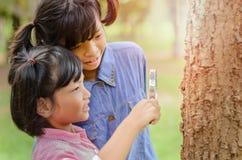 Mädchen wenig zwei, das den Baumstamm durch die Lupe überprüft Lizenzfreies Stockbild